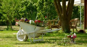wheelbarrow with flowers700